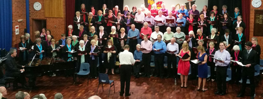 The HCS Summer Concert, July 2014